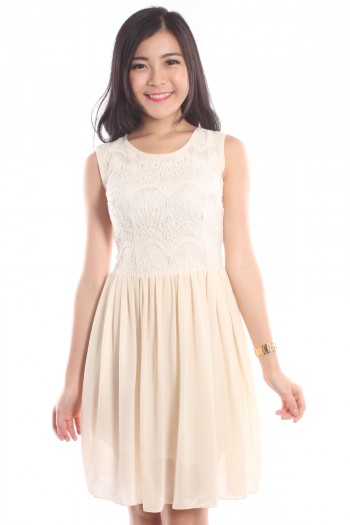 Lace Pleated Dress