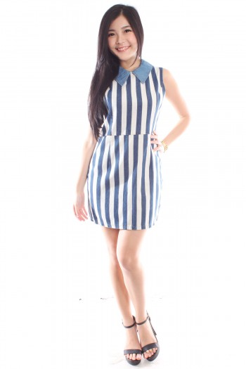 Striped Denim Dress