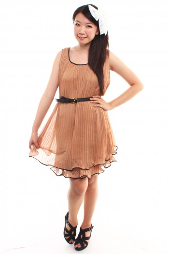Chiffon Pleated Frock