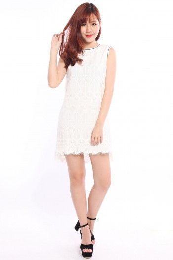 Scallop Lace Jersey Trim Dress