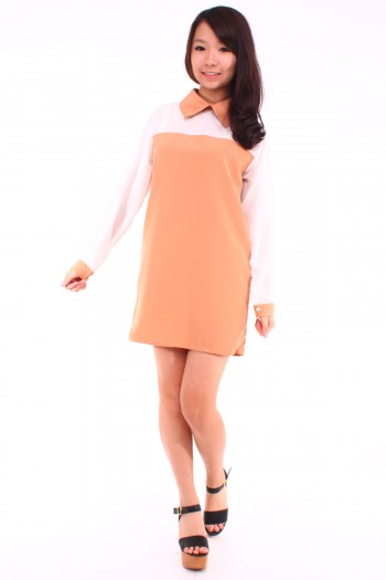 Sharp Collar Long Sleeves Shift Dress