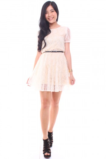 Reversible Lace Skater Dress