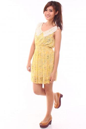 Crochet Collar Floral Dress